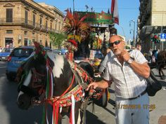 Lomailua Palermossa marraskuussa 2014