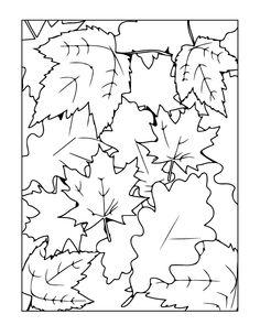 Leaf Coloring Sheet