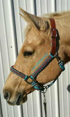 Custom Order **** Orange & Black $6 shipping  Fully braided horse halter. Features adjustable noseband with sliding ring underneath as well as leather