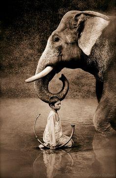 Gregory Colbert / art photography / boy and elephant / harmony Theo Theo, Elephant Love, Elephant Walk, Asian Elephant, Gentle Giant, Belle Photo, Great Photos, Amazing Photos, Black And White Photography