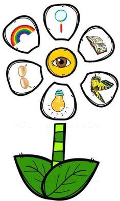 Build a Flower 5 Senses Match