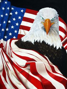 Eagle- oil on canvas. by Nicholas Garza. Eagle Images, Eagle Pictures, I Love America, God Bless America, American Flag Wallpaper, Eagle Wallpaper, David Mann Art, American Flag Eagle, American Pride