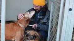 """Il volontario al canile e gli amici animali: """"Non sono un gioco"""""""