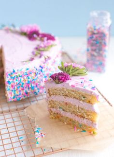 Birthday Cake Vegan Confetti Cake With Fancy Sprinkles Brownie Desserts, Oreo Dessert, Mini Desserts, Dessert Ideas, Food Cakes, Cupcake Cakes, Baking Cakes, Cupcakes, Cake Vegan
