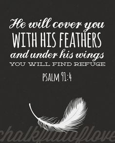 I will say of the Lord, He is my Refuge and my Fortress, my God; on Him I lean and rely, and in Him I confidently trust! Then He will cover you with His pinions, and under His wings shall you trust and find refuge; His truth and His faithfulness are a shield and a buckler. (Psalm 91:2, 4 AMP)