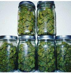 Level 420 Ideas for the house💚🖤 Buy Cannabis Online, Buy Weed Online, Marijuana Plants, Cannabis Edibles, Got Vape, Weed Shop, Bad Girl Aesthetic, Medical Cannabis, Nuggwifee