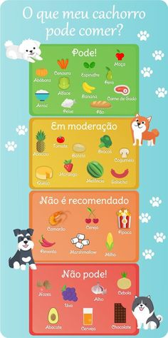 O que meu cachorro pode comer? | Pets | Blog | O Vermelhinho Cachorros Chow Chow, Dog Care, Love Pet, I Love Dogs, Cute Dogs, Amora, Schnauzers, Beagle, Baby Dogs