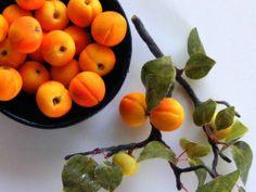 Apricots - Miniature in 1:12 by Erzsébet Bodzás, IGMA Artisan