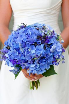 Love the Hydrangeas wedding bouquet(NOTE: hydrangeas are not super durable and need tons of water, maybe just do them as center pieces) Bouquet Bleu, Bridal Bouquet Blue, Bride Bouquets, Blue Bridal, Bouquet Wedding, Blue Hydrangea Bouquet, Green Hydrangea, Bridesmaid Bouquets, Spring Bouquet