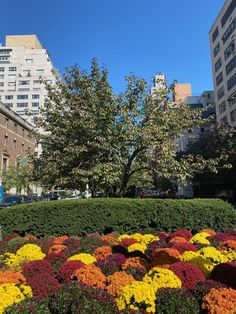 Habitually Chic® » October 2020 in New York Bon Weekend, Autumn Inspiration, Aesthetic Pictures, Sunny Days, Townhouse, New York, Sidewalk, October, Italy