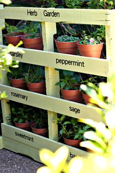 How to Make a Herb Garden from a Pallet – DIY