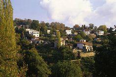 PORTARIA Greek Flowers, Forest Mountain, Tree Forest, Flowering Trees, Forests, Greece, River, Mountains, Landscape