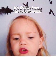 It's frickin bats . i love you halloween :) Fall Halloween, Happy Halloween, Halloween Party, Halloween Decorations, Halloween Quotes, Halloween Meme, Retro Halloween, Halloween Witches, Halloween Season