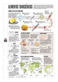 Infografía: Alimentos transgénicos