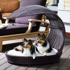 Wicker chaise pet lounger.