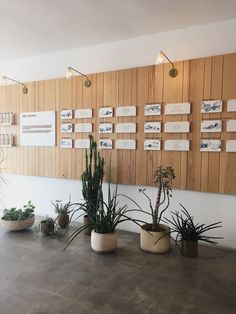 I LIVE WITH YOU: Favorite Spaces - Moon Juice, Silver Lake Retail Interior Design, Retail Store Design, Gray Interior, Cafe House, Cafe Design, Wall Treatments, Moon Juice, Wall Signs, Exterior Design