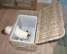 Afbeeldingsresultaat voor kattenbak oplossing huis