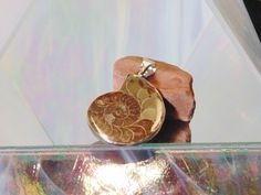 Million Year Old Ancient Ammonite Fossil Pendant .925 Sterling Silver 1-1/2