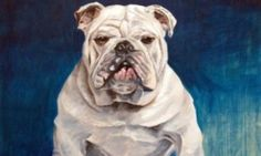 - Pet Paintings by David Kennett