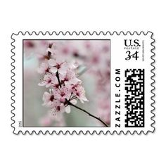 Blooming Spring Cherry Blossoms Stamp