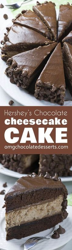 "Hershey's Chocolate Cheesecake Cake is rich and decadent combo of my favorite chocolate cheesecake and Hershey's ""Perfectly Chocolate"" Chocolate Cake and frosting, surrounded with lots of chocolate chips!"