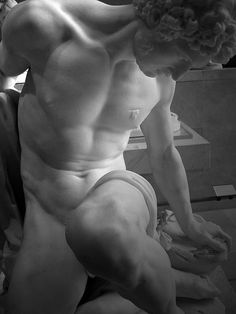 When I see something like this statue, I can not imagine how the artist is able to make a piece of stone so resemble something alive! That what looks should be warm, soft flesh is actually stony and cold. I am in complete awe. (Gladiateur mourant)
