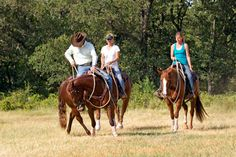 Training Tip of the Week:  Correcting the buddy sour horse.    It's very natural for horses not to want to separate from each other because they know that there is safety in numbers. When you're dealing with a buddy sour horse, you have to use a little reverse psychology on him. Instead of the horse thinking that being with his buddy is the best place in the world, you have to make the horse believe that his buddy is the worst thing in the world. That is accomplished by making the horse…