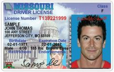 New York Drivers License Psd Template  Photoshop File  Design