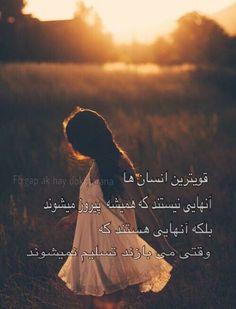 Afghan Love Life Quotes Dari Farsi