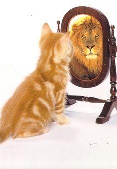 Do you have self confidence problems - http://selfconfidence-6nryz347.myreputablereviews.com