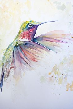 Original Watercolour Humming Bird  painting print  by TheIronQuill, $18.00