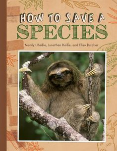 Problem and solution: Many short examples in this book. How to Save a Species by Marilyn Baillie