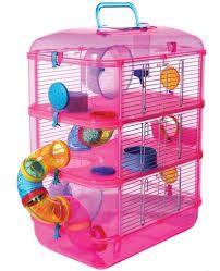 Resultado de imagen para juguetes para hamster ruso