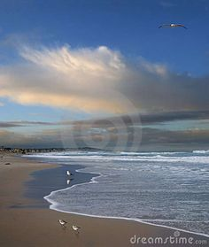 pacific ocean pictures in california | Pacific Ocean, San Diego, California Royalty Free Stock Photos - Image ...