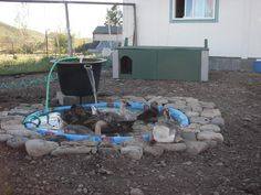 coops Pond, what a great way to keep the water moving and prevent disease.Pond, what a great way to keep the water moving and prevent disease. Backyard Ducks, Backyard Farming, Chickens Backyard, Chicken Life, Chicken Chick, Pet Chickens, Raising Chickens, Duck Pens, Duck Duck