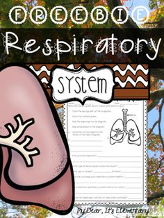 """Keep students engaged with the multiple intelligences. Here is a culminating assessment piece for the many activities TO MAKE THE RESPIRATORY SYSTEM STICK!!  {Barely containing my excitement here}This freebie is part of an {original mini-unit} has been revised {2016} to a FULL UNIT as part of the human body """"Make it!"""