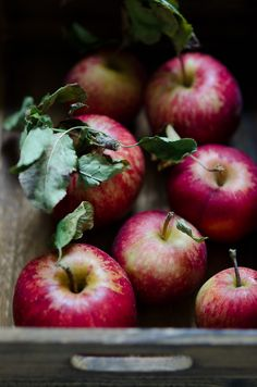 Apples | At Down Under | Viviane Perenyi