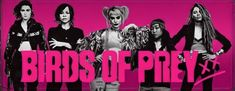 has released a new promo poster for Birds of Prey (and the Fantabulous Emancipation of one Harley Quinn), giving us new looks at all five members of the team, and one of Harley's hyenas. Black Adam Shazam, Justice League Aquaman, Free Films, Mary Elizabeth Winstead, Comic Movies, Hyena, Black Canary, Birds Of Prey, Action Movies