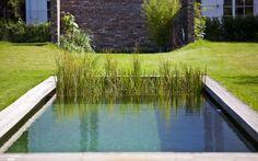 Cette piscine écologique composée de bois, matériau noble et intemporelle, offre un style minimaliste très tendance.