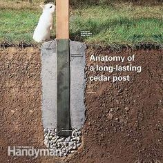 Did your fence posts rot at the bottom? Here's how to install new onesand avoid the problems that made your old posts rot. Did your fence posts rot at the bottom? Here's how to install new onesand avoid the problems that made your old posts rot. Backyard Fences, Backyard Projects, Outdoor Projects, Garden Projects, Patio Fence, Diy Fence, Backyard Fort, Wood Projects, Garden Fencing