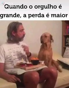 Funny Vidos, Cute Funny Dogs, Funny Laugh, Cute Funny Animals, Stupid Funny Memes, Funny Animal Jokes, Funny Animal Pictures, Animal Memes, Video Humour