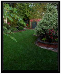 . Stepping Stones, Garden, Outdoor Decor, Plants, Home Decor, Stair Risers, Garten, Decoration Home, Room Decor
