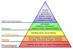 Maslow& Hierarchy of Needs helps managers understand employees& needs in order to further employees& motivation. Read more about maslow& hierarchy of needs in the Boundless open textbook. Abraham Maslow, Balance Yoga, Positive Verstärkung, Paul Graham, Maslow's Hierarchy Of Needs, Demon Hierarchy, Pseudo Science, Self Actualization, 20 Questions
