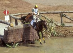 Home of Olympic eventing horses, Kibah Tic-Toc, a noted dual gold medal winner and Kibah Sandstone - Carroll, NSW