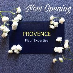 Now Opening!!! PROVENCE Fleur Expertise   Provide Flower Arrangements for :  👰 Wedding and Engagement   🎉 Birthday / Anniversary Gift 👨‍🎓 👩‍🎓 Graduation Bouquet  🌹 Blooming Box 🎈 Custom Hot Air Balloon 🌻 Flower Basket  💎 Crystal Flower Box  💐 Flower Bouquet  🎀 Custom Flower Arrangement   Follow us and get the promo 🌸😊 for any inquiries  👇🏻👇🏻👇🏻👇🏻👇🏻 WA : 082237893999/081238103641  #flower #fleur #flowerarrangement #flowerbouqet #bouquet #weddingbouquet #flowercrown