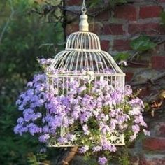 Recycle an old bird cage into a beautiful hanging planter