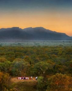 Taking a safari has grown into a super-popular honeymoon option; these trips are unforgettable. #Jetsetter #JSSunrise