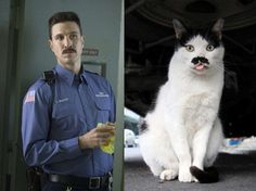 """George """"Pornstache"""" Mendez — This Cat With a Mustache 