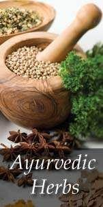 Ayurveda Herbs
