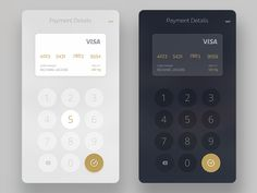 credit card payment module by Rit